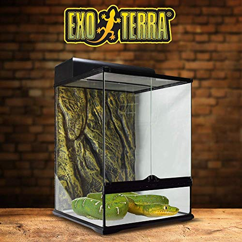 Exo Terra PT2662 Rainforest Habitat Kit M - 5