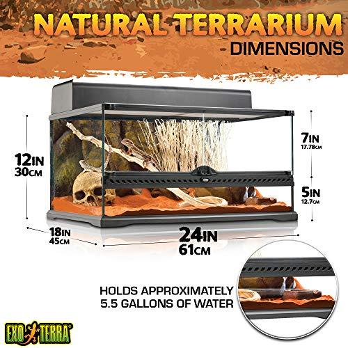 Exo Terra Natürliches Terrarium aus Glas - 3