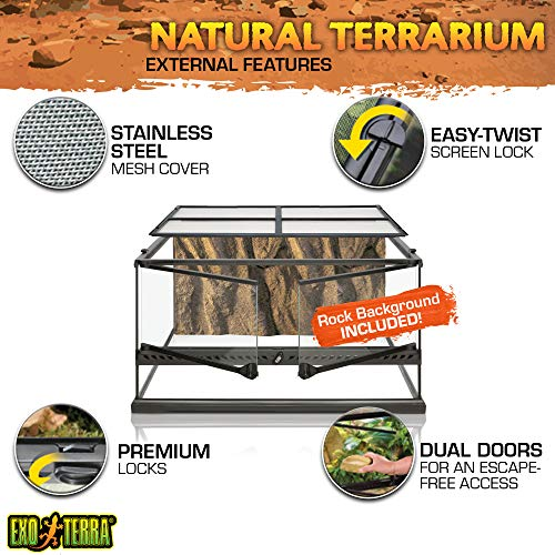 Exo Terra Natürliches Terrarium aus Glas - 2