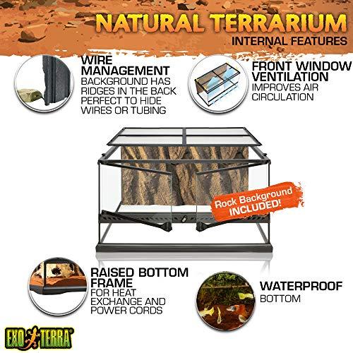 Exo Terra Natürliches Terrarium aus Glas - 6