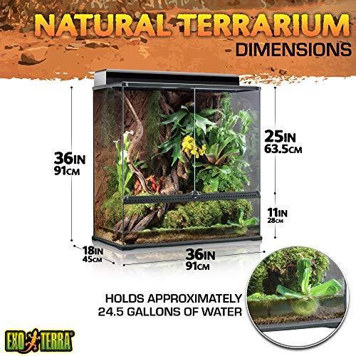 Exo Terra PT2609 Glasterrarium - 2