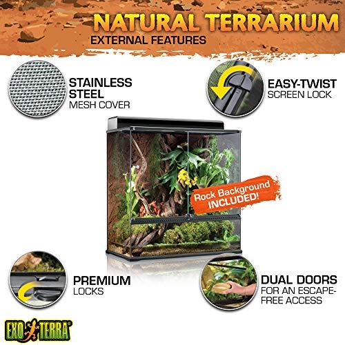 Exo Terra PT2609 Glasterrarium - 3