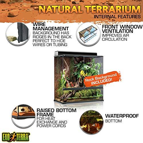 Exo Terra PT2609 Glasterrarium - 4