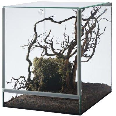 Glasterrarium 25x30x30 Falltür