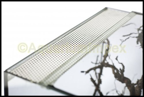Glasterrarium 25x30x30 Falltür - 3