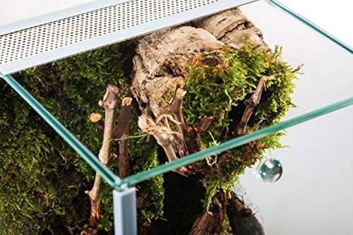 Glasterrarium 20x20x30 Falltür - 2