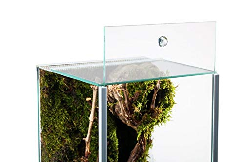 Glasterrarium 20x20x30 Falltür - 3
