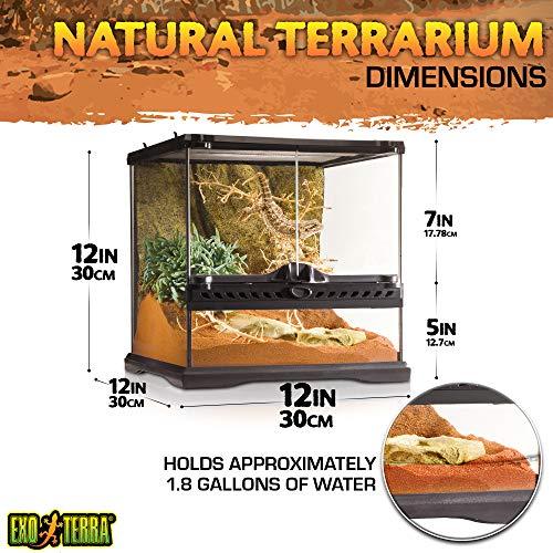 Exo Terra PT2600 Glasterrarium - 2