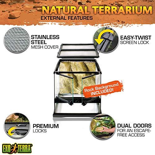 Exo Terra PT2600 Glasterrarium - 3