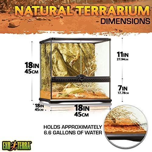 Exo Terra PT2605 Glasterrarium - 2