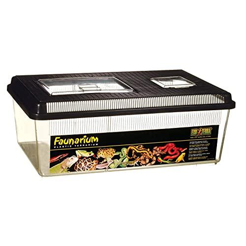 Exo Terra PT2310 Faunarium flach Reptilienbehälter