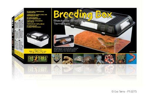 Exo Terra PT2275 Brutbox - 2