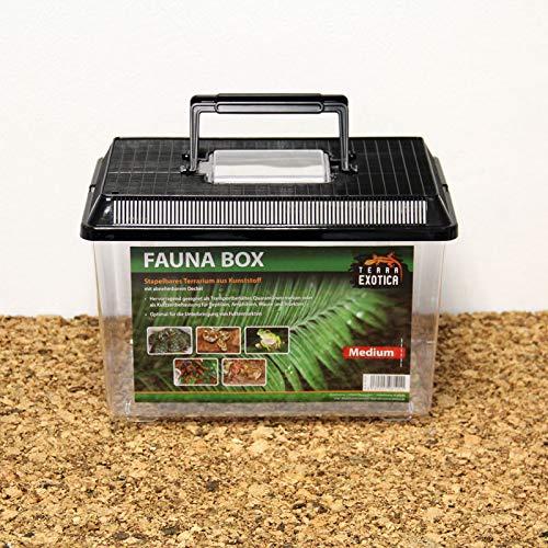 Fauna-Box 30x20x20cm, Deckel schwarz