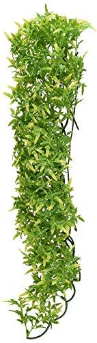 Zoo Med BU-35 Bolivian Croton Kunststoffpflanze, large, Versteck- und Klettermöglichkeiten für Reptilien
