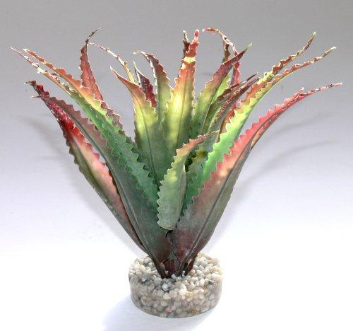 Sydeco 349679 Terrariumpflanze Aloes