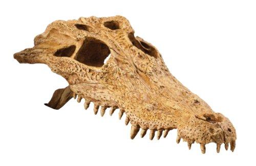 Exo Terra PT2856 Krokodilschädel - Totenschädel Versteck für Reptilien, 23 x 12 x 7.5 cm