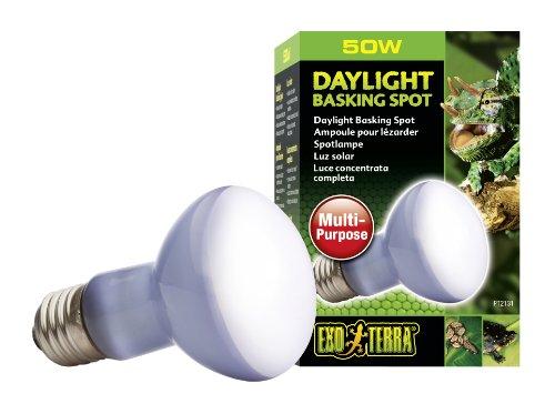 Exo Terra PT2131 Daylight Basking Spot – Breitspektrum-Tageslichtlampe für Terrarien
