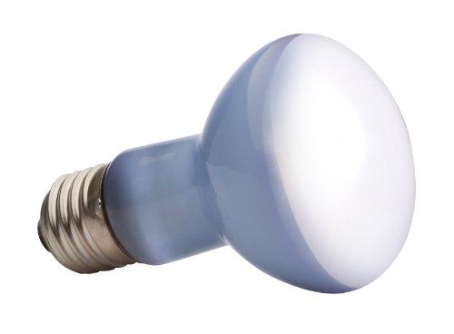 Exo Terra PT2131 Daylight Basking Spot – Breitspektrum-Tageslichtlampe für Terrarien R20/50W - 2