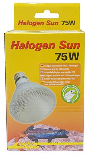 Lucky Reptile HS-75 Halogen Sun, 75 W, Wärmestrahler für E27 Fassung - 2