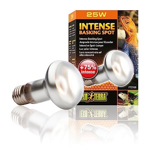 Exo Terra PT2136 Intense Basking Spot – Wärmespotlampe S20/75W - 2